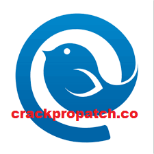 Mailbird PRO 2.9.31.0 Crack Licesnce Key with Full Torrent {2021}