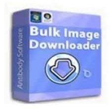 Bulk Image Downloader 6.2.0.0 Crack With Torrent (2022)